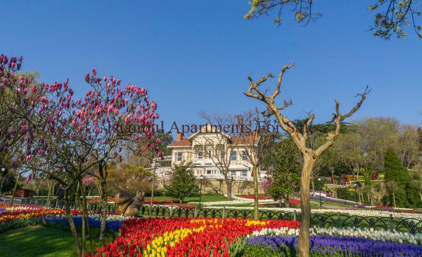 Beauties of Istanbul Emirgan