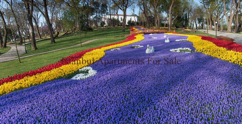 Istanbul Tulip Garden