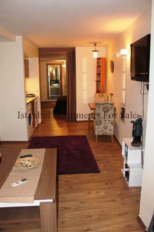 1 Bedroom Apartments In Greenville Nc: 1 Bedroom Apartments In Taksim Istanbul For Sale